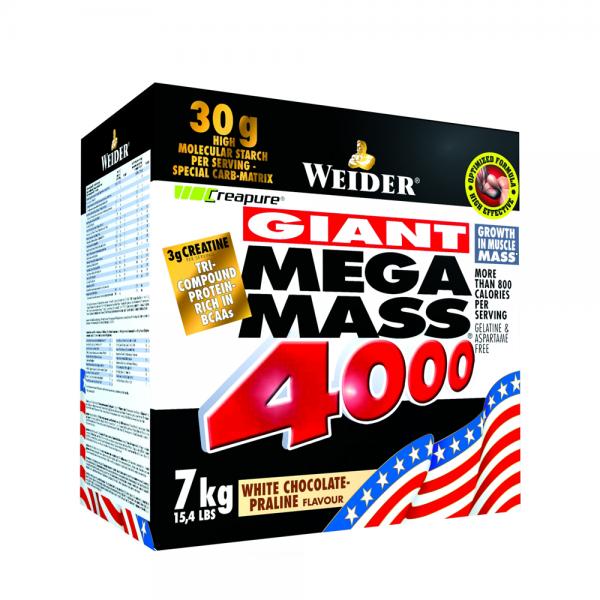 Giant Mega Mass 4000 7 kg